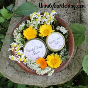 Two salves in a bowl of flowers.