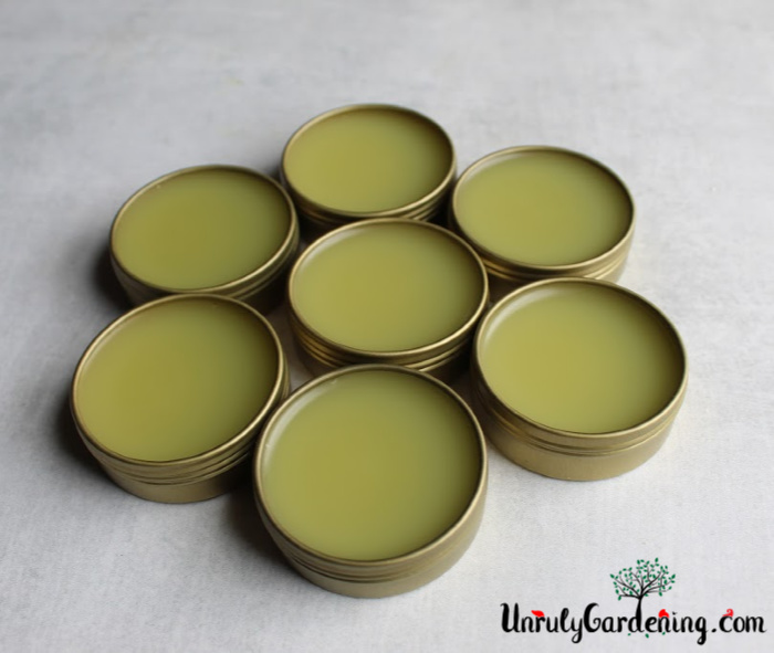 Seven finished tins of salve, arranged in a circle.