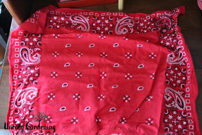 A red bandana, spread flat.