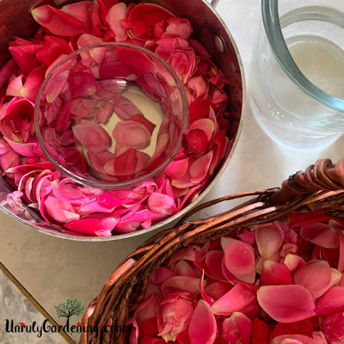 A metal pot full of rosepetals, water, and a single glass bowl. A basket of rose petals sits in the bottom right, while a clear glass pitcher sits in the upper right.