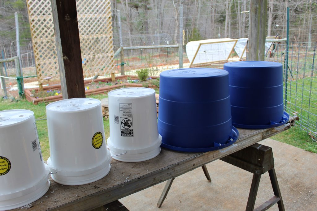 A row of buckets lined up at a slant on top of a makeshift table. There and three white buckets on the left, and two blue buckets on the right. A garden can be seen in the background, and fencing can be seen on the far right side.
