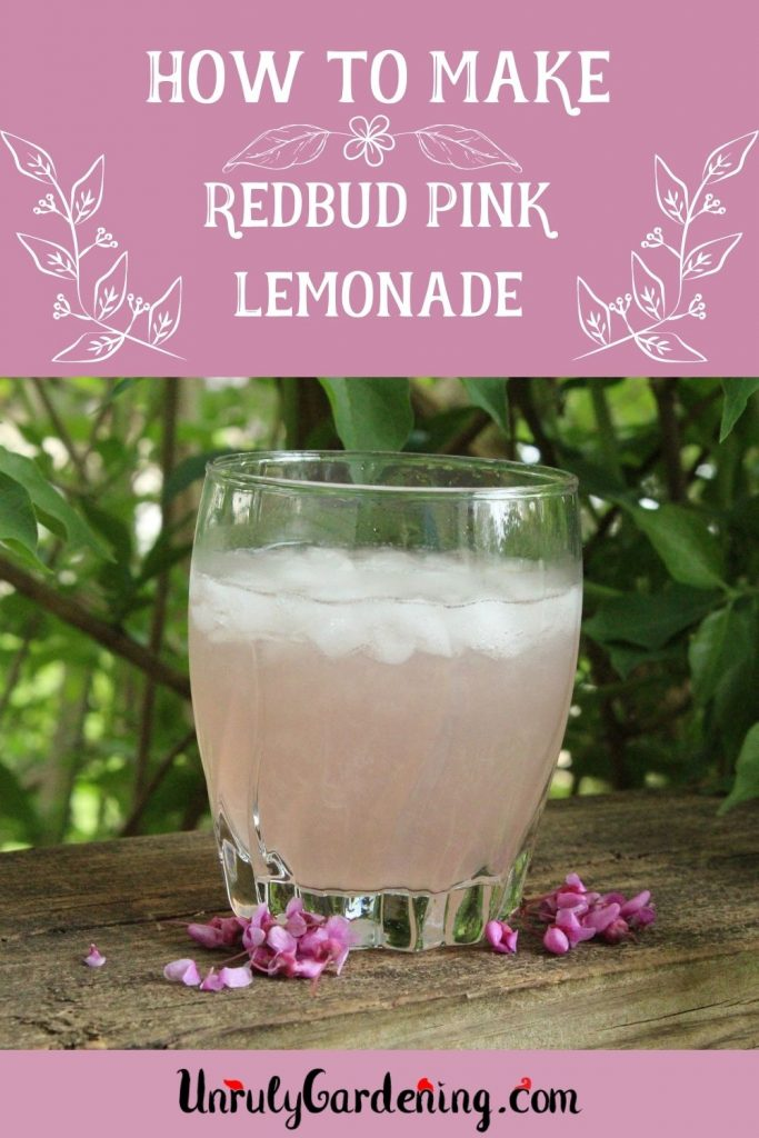 Image is of a pinterest pin for how to make redbud jelly. The words are large and in white, with white floral graphics on a pink background. An image of a glass of pink redbud lemonade is underneath it, with a scattering of redbud flowers at the base of the glass. At the very bottom of the image, a pink strip sits with the Unruly Gardening logo.