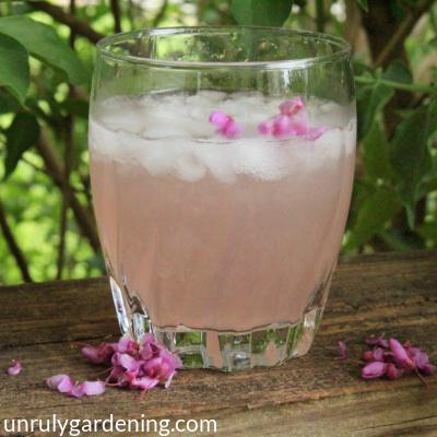 Redbud Pink Lemonade