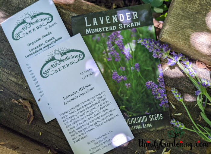 packets of lavender seeds