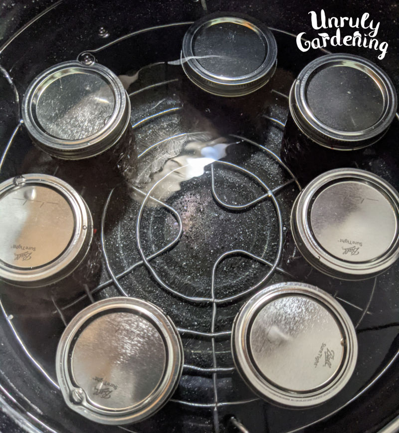 jars sitting in water bath canner