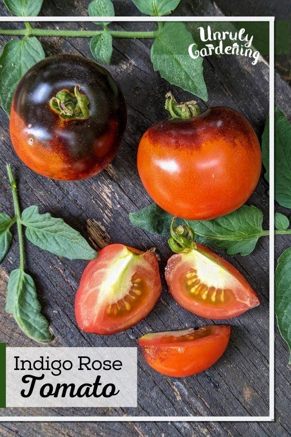 indigo rose tomatoes - whole and sliced, on wooden background