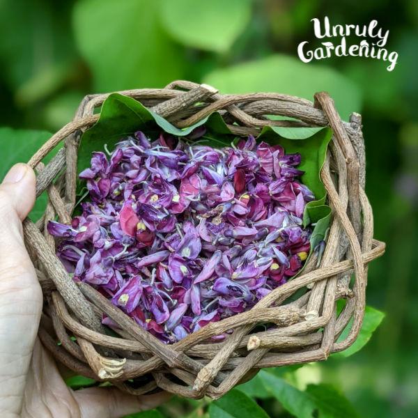 kudzu flowers in a kudzu basket